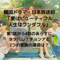 韓国ドラマ・日本放送 愛はビューティフル人生はワンダフル 第1話から4話 あらすじ ネタバレ