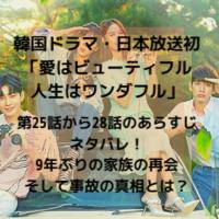 韓国ドラマ・日本放送 愛はビューティフル人生はワンダフル 第25話から28話 あらすじ ネタバレ