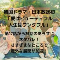 韓国ドラマ・日本放送 愛はビューティフル人生はワンダフル 第17話から20話 あらすじ ネタバレ