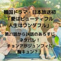 韓国ドラマ・日本放送 愛はビューティフル人生はワンダフル 第20話から24話 あらすじ ネタバレ