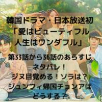 韓国ドラマ・日本放送 愛はビューティフル人生はワンダフル 第33話 36話 あらすじ ネタバレ