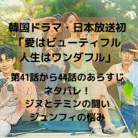 韓国ドラマ・日本放送 愛はビューティフル人生はワンダフル 第41話 44話 あらすじ ネタバレ