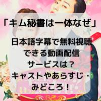 キム秘書は一体なぜ 日本語字幕 無料視聴
