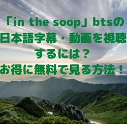 「in the soop」btsの日本語字幕・動画を視聴するには?お得に無料で見る方法!